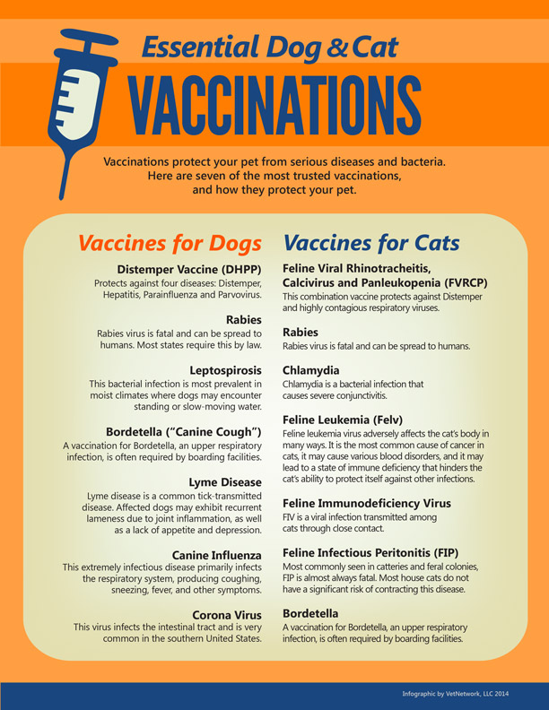 pet vaccines in hicksville ny