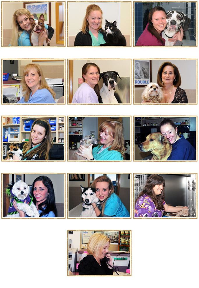 veterinary staff in Hicksville, NY
